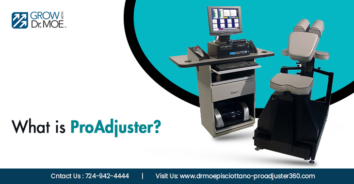 What is ProAdjuster?